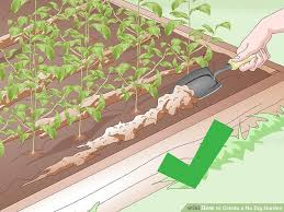 image titled create a no dig garden step 19