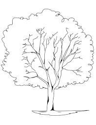Small Picture Tree Coloring Page creativemoveme