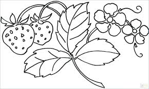 coloring pages coloring pictures of flowers in a vase pages flower and hearts daisy page