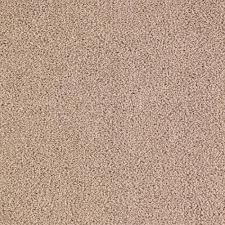 Mohawk Smartstrand Color Chart Petproof Collinger Ii Color Roadside Textured 12 Ft Carpet