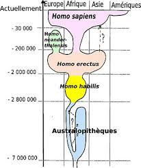 Genesis 1 And 2 Venn Diagram February 2015 Messiah For All