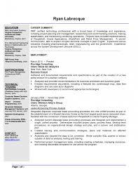 It Consultant Sample Resume Paramedic Resume Template