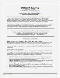 Investment Banking Resumes New 51 Luxury Personal Banker Resume