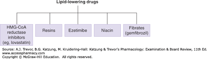 Agents Used In Dyslipidemia Katzung Trevors