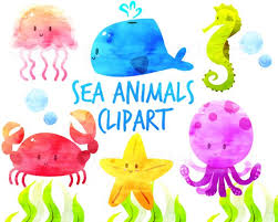 cute sea animals clipart. Wonderful Animals Image 0 Intended Cute Sea Animals Clipart A