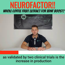 A single 100 mg dose was given and then blood drawn every 30 minutes for two hours. Neuratech Neurofactor Whole Coffee Fruit Extract For Bdnf Boost Facebook