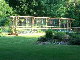 how to keep deer away from my garden how to keep deer out of vegetable garden