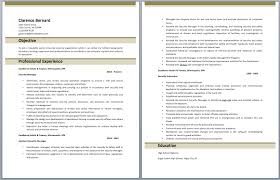 Security Officer Resume Objective Hotel Security Officer Resume