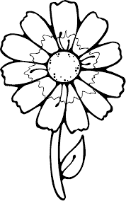 Collection 4 Different Flower Coloring Pages Black And White
