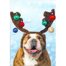 Bulldog with Antlers & Ornaments Christmas Greeting Cards ...