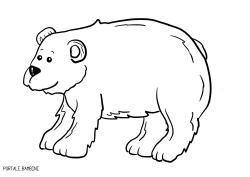 Disegni Di Orsi Da Stampare E Colorare Gratis Portale Bambini
