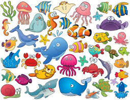 cute sea animals clipart. Simple Animals Instant Download 42 Cute Sea Animal Clip Art By OneStopDigital 399 Inside Animals Clipart