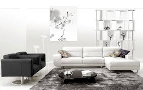 augment the look of your living room by using area rugs