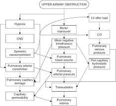 Pulmonary Edema Chart Usdchfchart Com