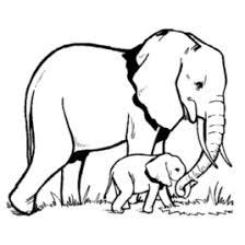 Small Picture Elephant Coloring For ToddlersColoringPrintable Coloring Pages