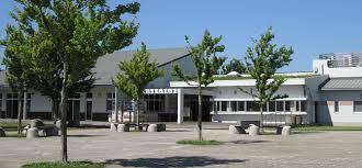 「茅ヶ崎市里山公園画像」の画像検索結果
