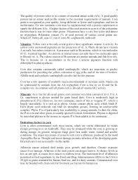 analysis example essay causal analysis essay examples analytical essay format analytical