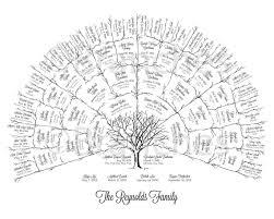 Ancestor Genealogy Family Tree Fan Chart 5 Generations