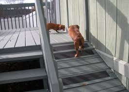 image of outdoor dog ramp plans