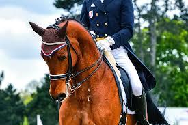 dressage horse insurance kay cas equine