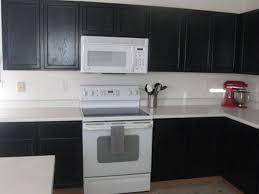 Small Picture Black painted cabinets with white appliances This convinces me