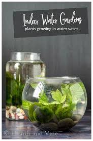 indoor water gardens with text