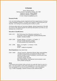 Profile Resume Samples Examples Professional Profile Resume Examples
