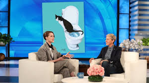 evan rachel wood s cat taught himself to use the toilet