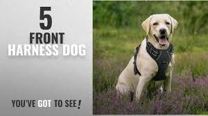 Dogs Juxzh Soft Front Range Dog Harness 3m Reflective No