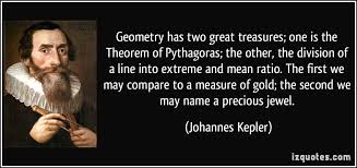 geometry has two great treasures one is the theorem of pythagoras  geometry has two great treasures one is the theorem of pythagoras the other