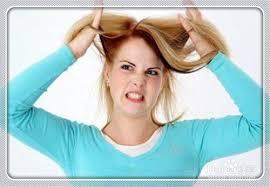 「脾氣毛病」的圖片搜尋結果