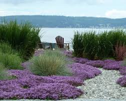 Small Picture Garden Design Garden Design with Beach Landscapes HD Pix with