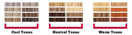 Ice Cream Hair Dye Colour Chart 28 Albums Of Ice Cream Hair Dye Ash Blonde Explore