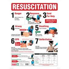 Full Sign Chart Brady 855383 Sign Resuscitation Wall Chart Full Colour 600h X 450w Mm