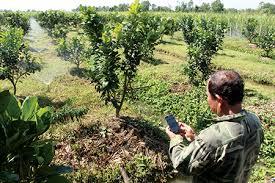 Bắt nhịp nông nghiệp thông minh