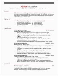 Executive Resume Template Free Download Unique Executive Resume