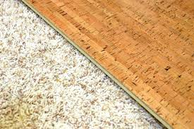 carpet to tile transition strip on concrete strips over tile to concrete transition decorations floors floor threshold carpet
