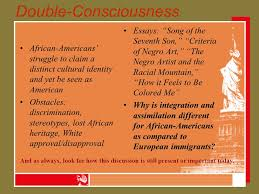 harlem renaissance themes for analysis double consciousness  double consciousness african americans struggle to claim a distinct cultural identity and yet
