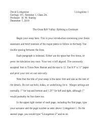 Chicago Format Essay Format Of Essays How Do I Format An Essay Essay