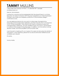 6+ developer cover letter   resume sections