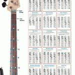 bass scales wall chart music bass guitar diagrams wiring diagram free printable