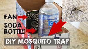 mosquito mosquitotrap catchmosquitoes