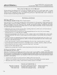 Online Resume Builder 2018 Impressive Online Resume Website Beautiful Resume New Line Resume Template Free