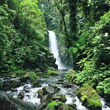 la paz waterfall gardens in costa rica
