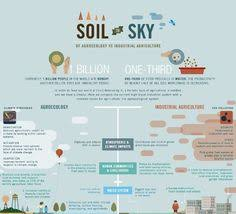 environmental essay on the kyoto protocol essayhowto agroecology vs industrial agriculture