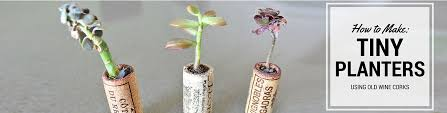 how to recycle old wine corks into cute mini planters