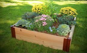 cedar raised garden kit 4ft x 4ft x 11in square 1 inch profile
