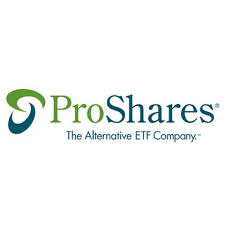 Proshares Ultra SP 40 SSO Stock Price News The Motley Fool Enchanting Sso Quote