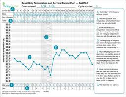 Pregnancy Basal Body Temperature Chart Examples Things