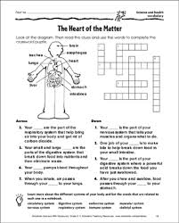 Heart Chart Crossword The Heart Of The Matter Science And Health Vocabulary